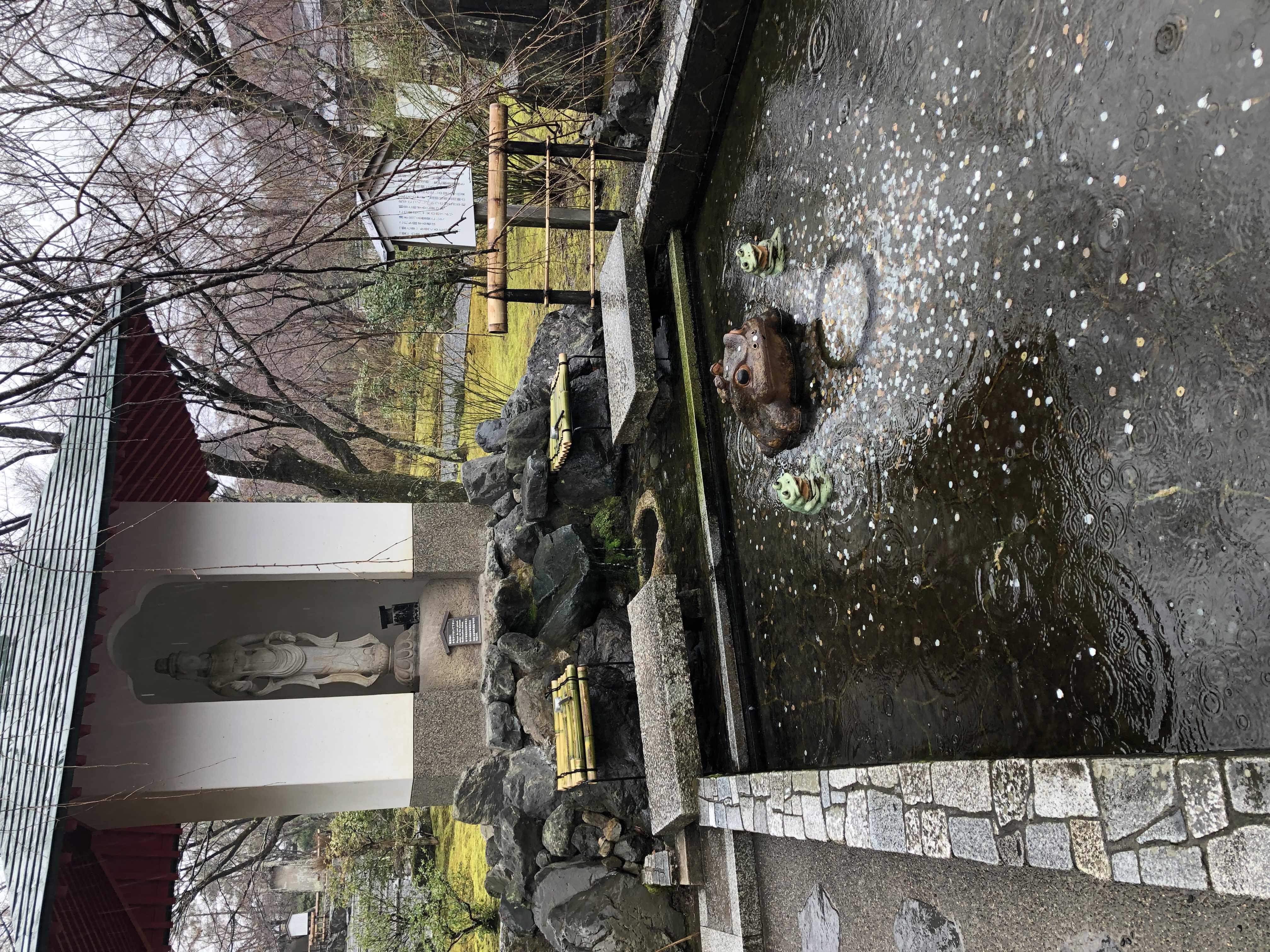 img 0806 - 世界文化遺產 天龍寺, 京都景點, 京都自由行, 天龍寺, 嵯峨嵐山景點